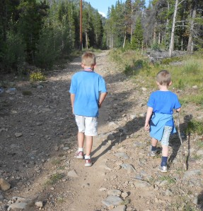 Hiking with the g-sons a couple of summers past.